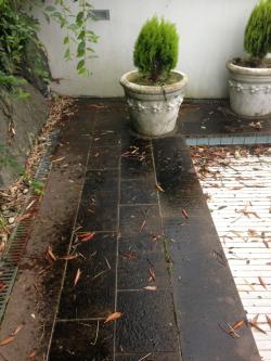 garten-terrassenreinigung weesen vorher