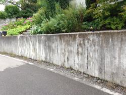 betonreinigung pfaffikon vorher